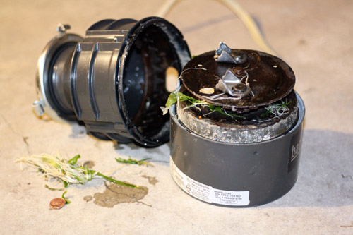Garbage Disposal Maintenance | Send smaller scraps down the disposal. Otherwise you risk the chance of clogs.