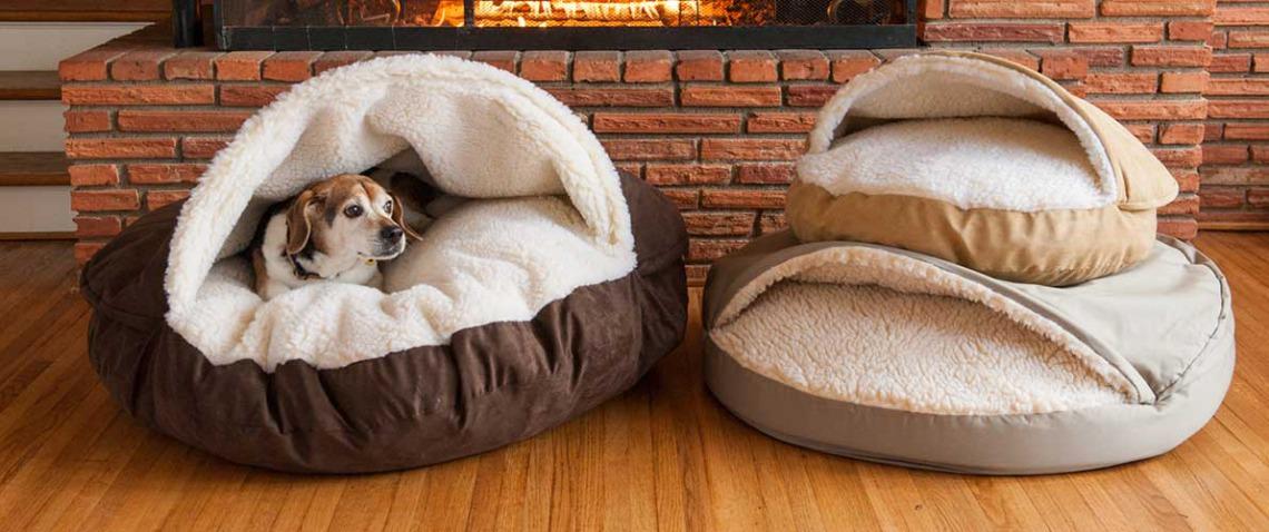 what size bed should i get for my dog greydock blog. Black Bedroom Furniture Sets. Home Design Ideas