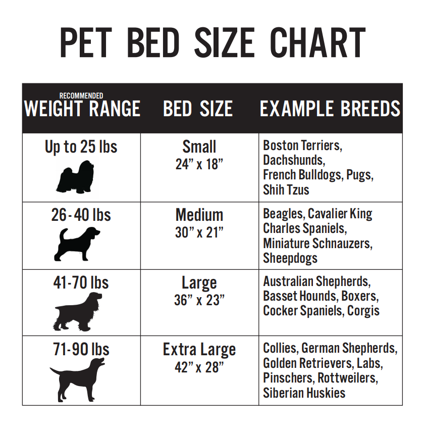 What Size Bed Should I Get For My Dog