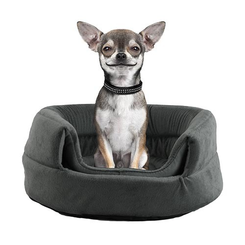 Dog Christmas Gift Idea: Igloo Cuddler Bed | GreyDock Blog