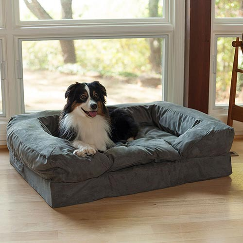 Dog Christmas Gift Idea: Snoozer Luxury Dog Sofa | GreyDock Blog