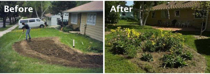Rain Garden: Before and After | GreyDock Blog