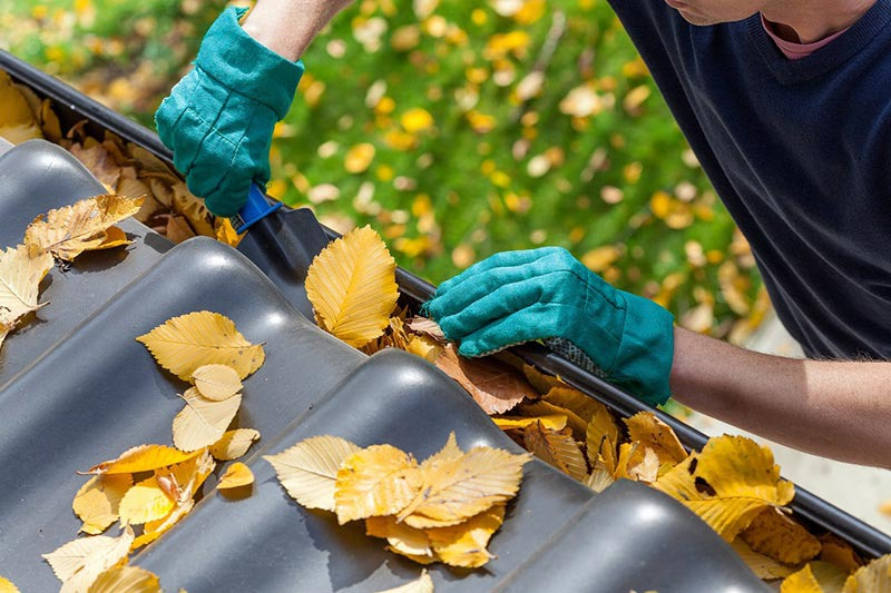 Fall Home Maintenance: Clean Your Gutters