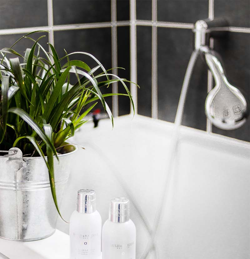 Add plants to your bathroom to feel relaxed. | GreyDock Blog