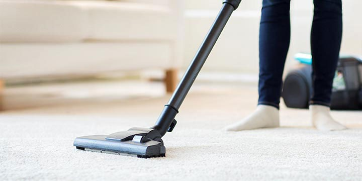 DIY Pest Control: Keep your home's interior clean