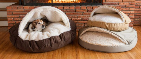 What Size Bed Should I Get For My Dog? | GreyDock Blog