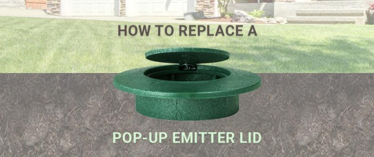 How to Replace a Broken Pop-Up Emitter Lid | GreyDock Blog