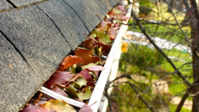 Why You Need To Clean Your Home's Gutters | GreyDock Blog